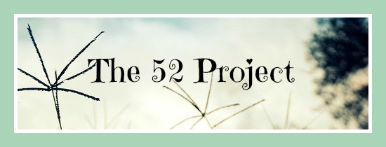 52project
